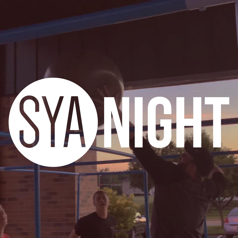 sya_night.png