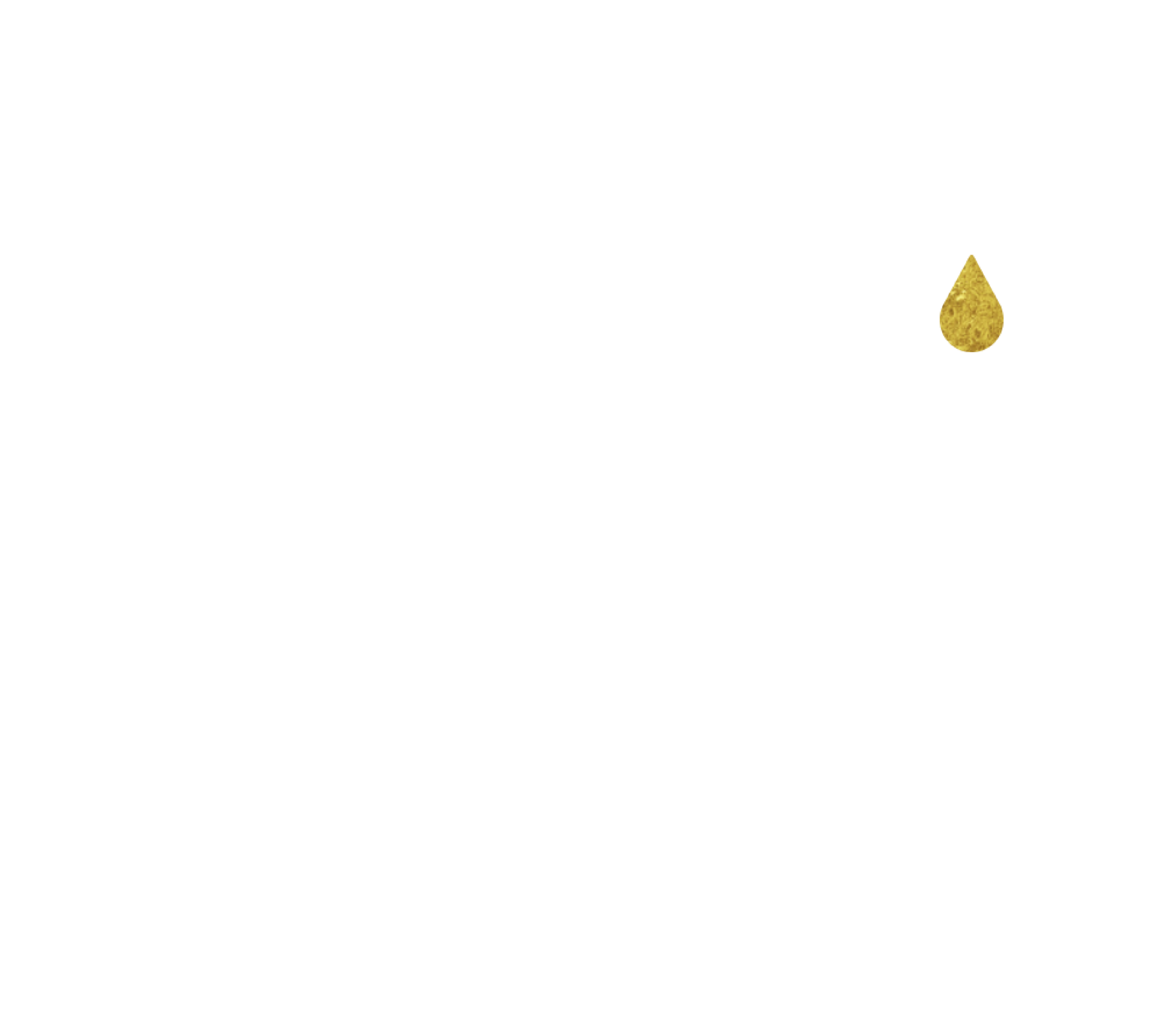 Gala Logo@3x.png