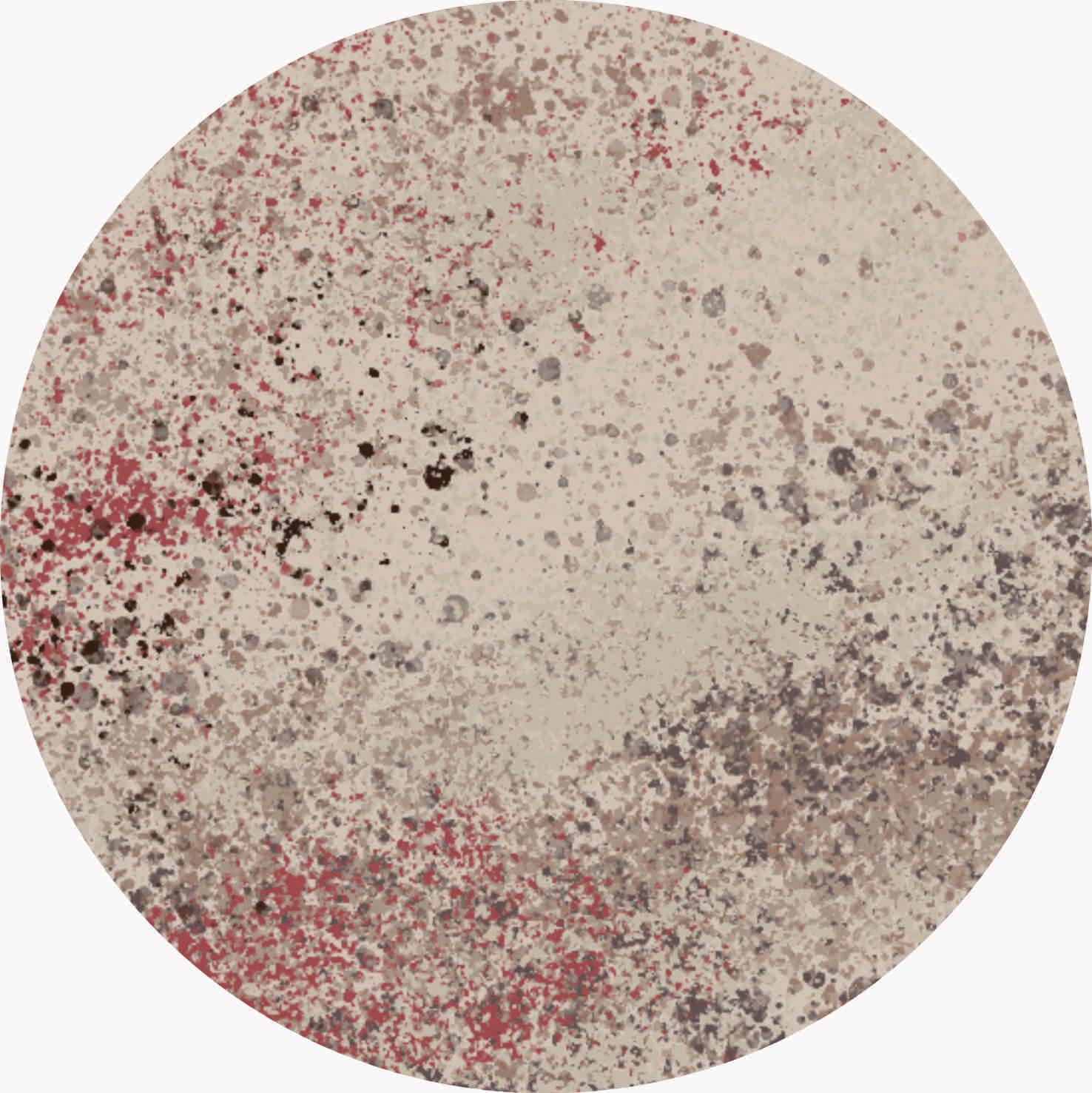 28 | Blossom -Demi Bezuidenhout