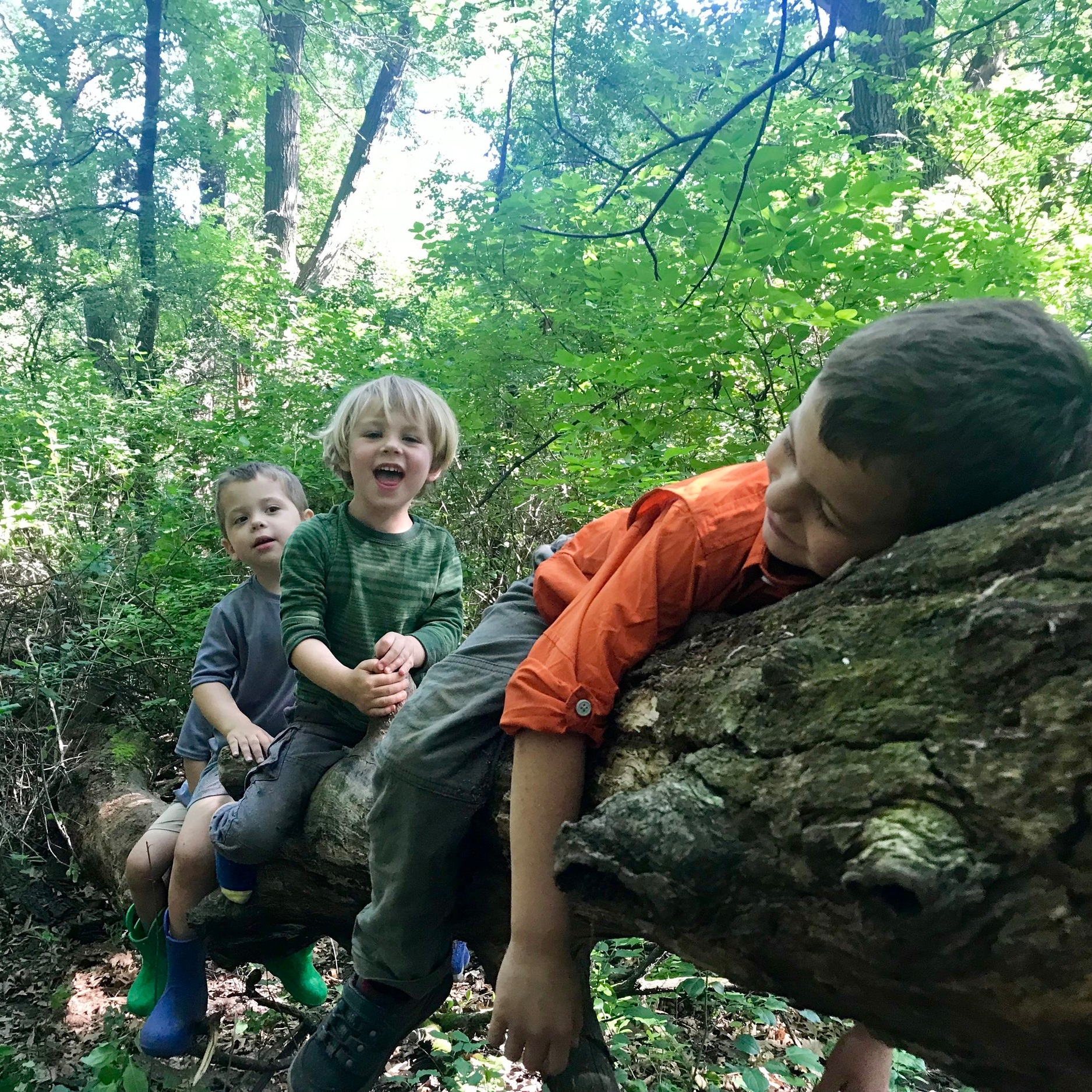 join us - We are enrolling for our 2019-2020 Forest School program.