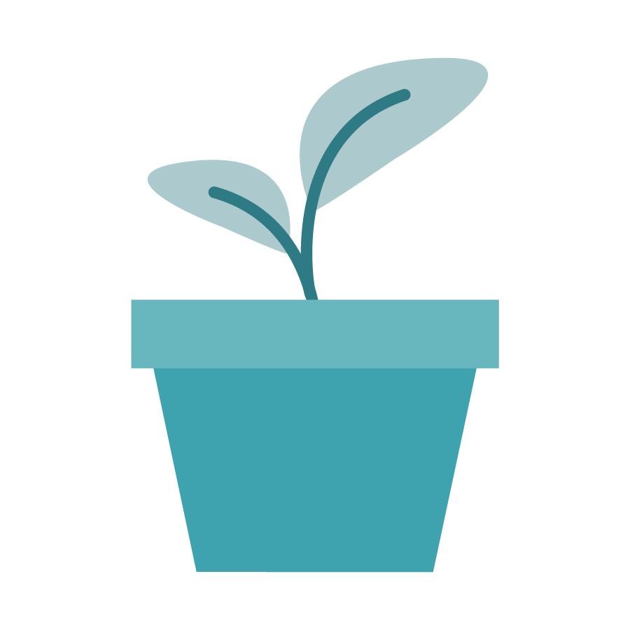 icons_02_Flower Pot-Professional Development.jpg