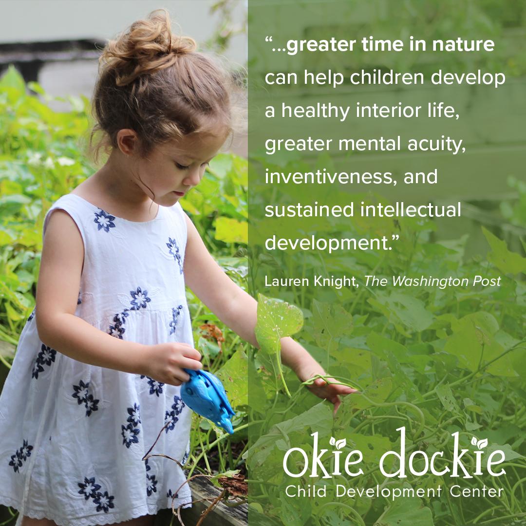 okie-dockie_nature-story_01.jpg