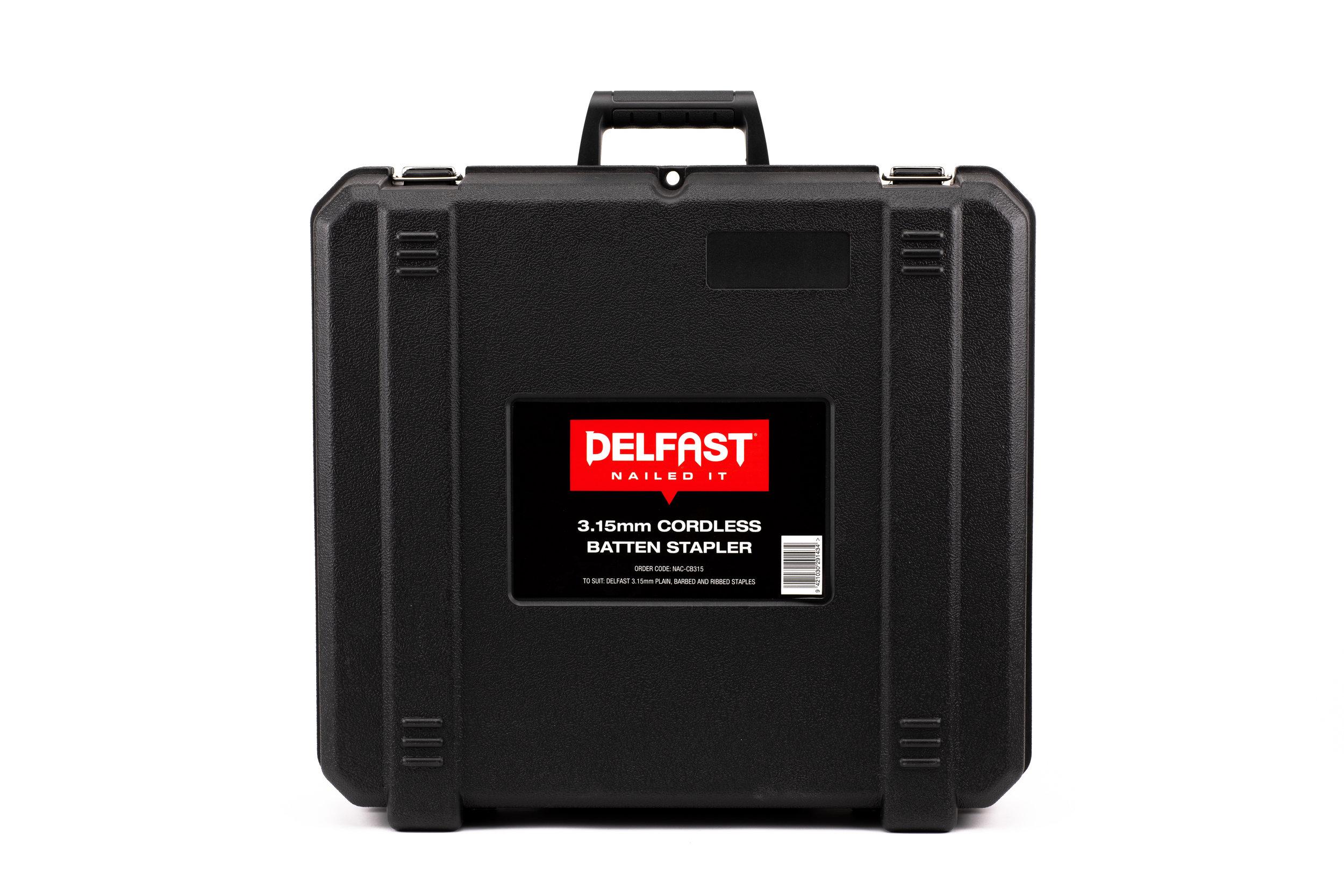 Delfast-11.jpg