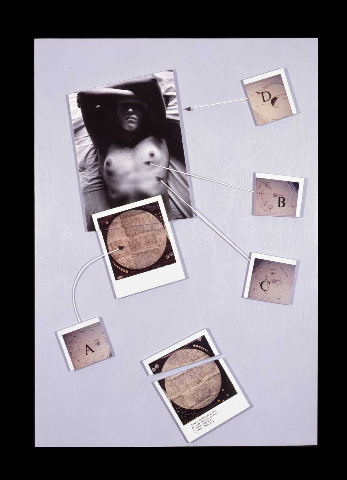 "The Moon is Always a Woman   19""H x 12"" W x 2""D, gelatin silver print, Polaroid SX-70 prints, wire, acrylic paint, masonite"