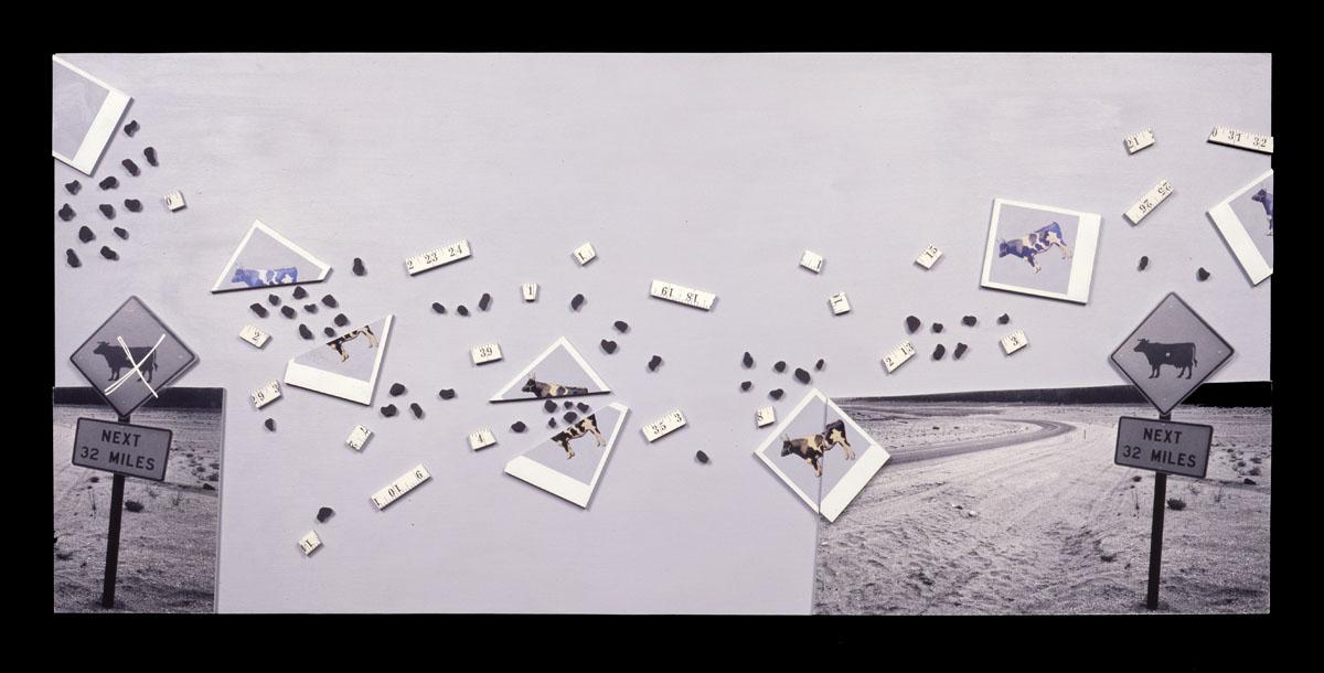 "Roamer   20""H x 48""W x 2""D, gelatin silver print, Polaroid SX-70 prints, wire, acrylic paint, masonite"