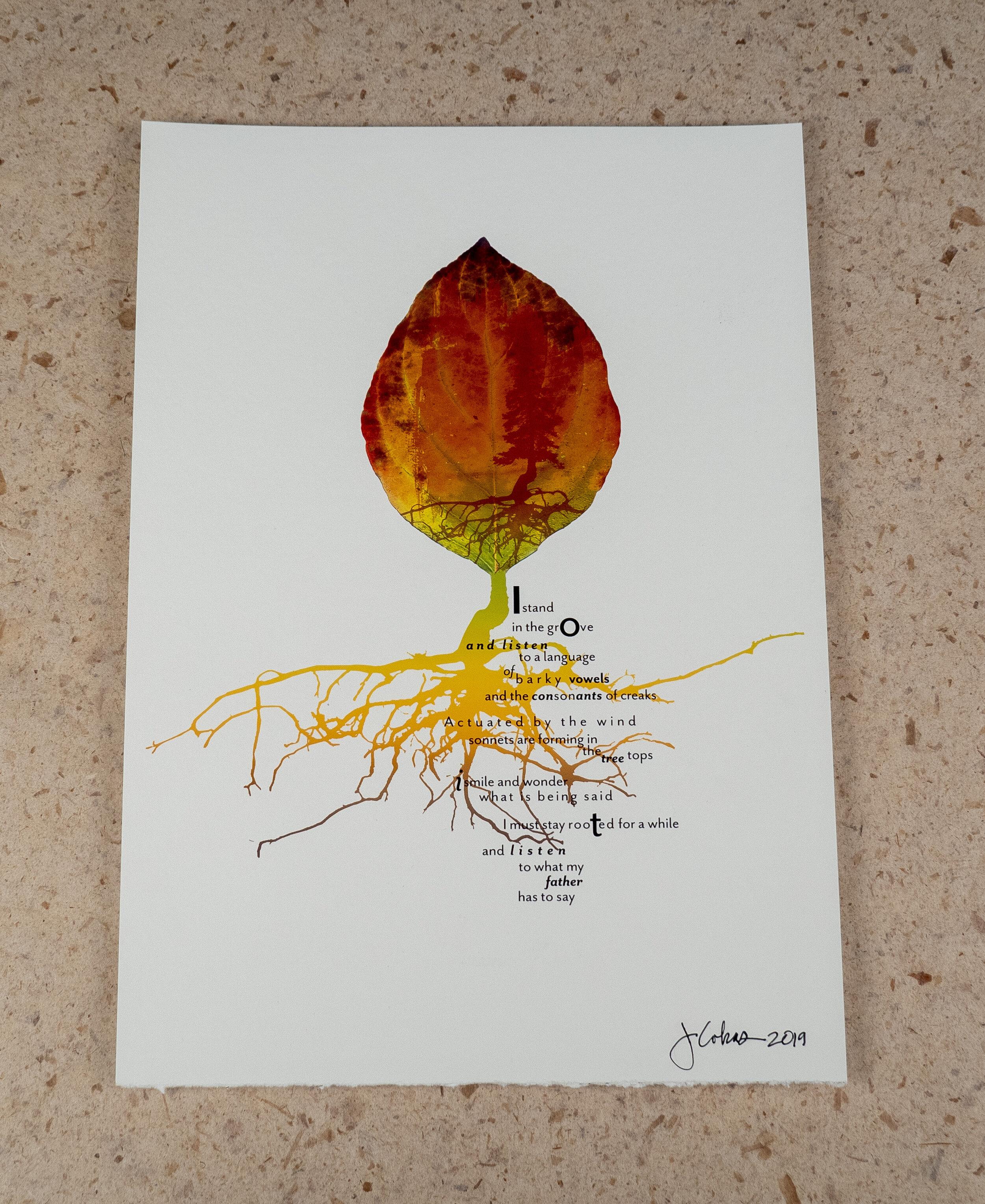 Grove-1_Print Photo.jpg