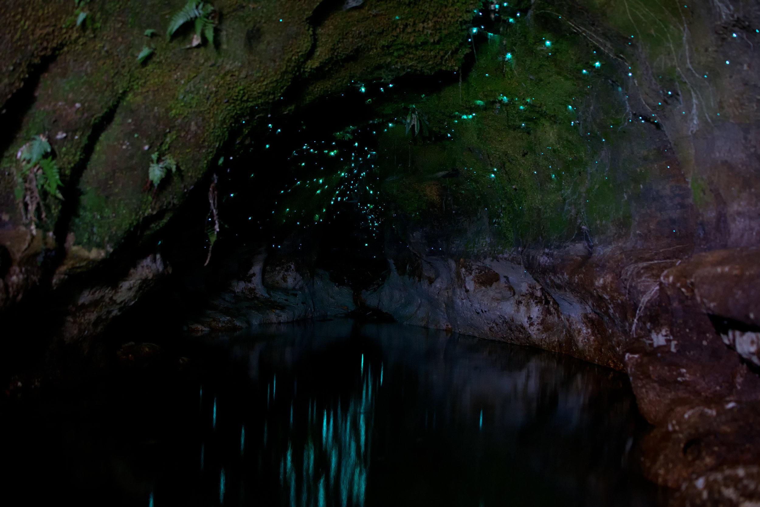 Amazing glow worm cave like waitomo caves