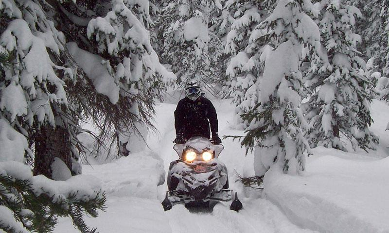 4499_ftOFO_Crested_Butte_Colorado_Snowmobiling_lg.jpg