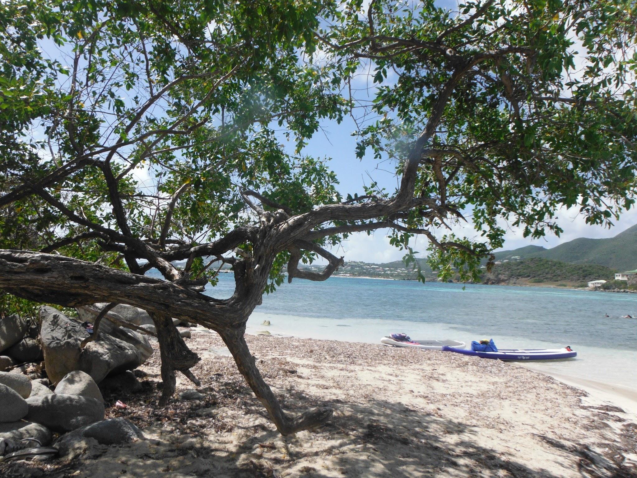 Beach - St. Martin - 55 by 55 Travel