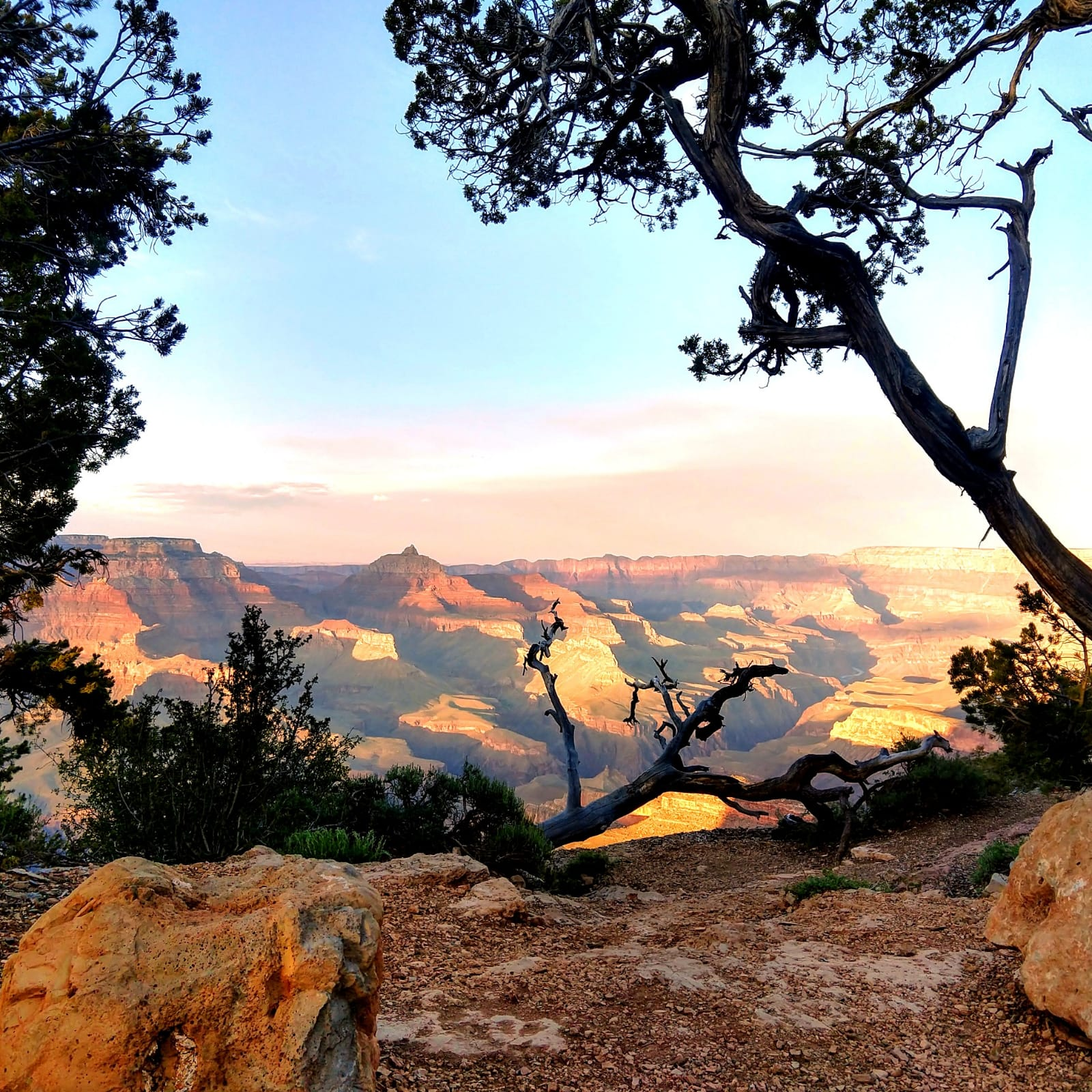 Grand Canyon Sunrise 55 by 55 Travel.jpg