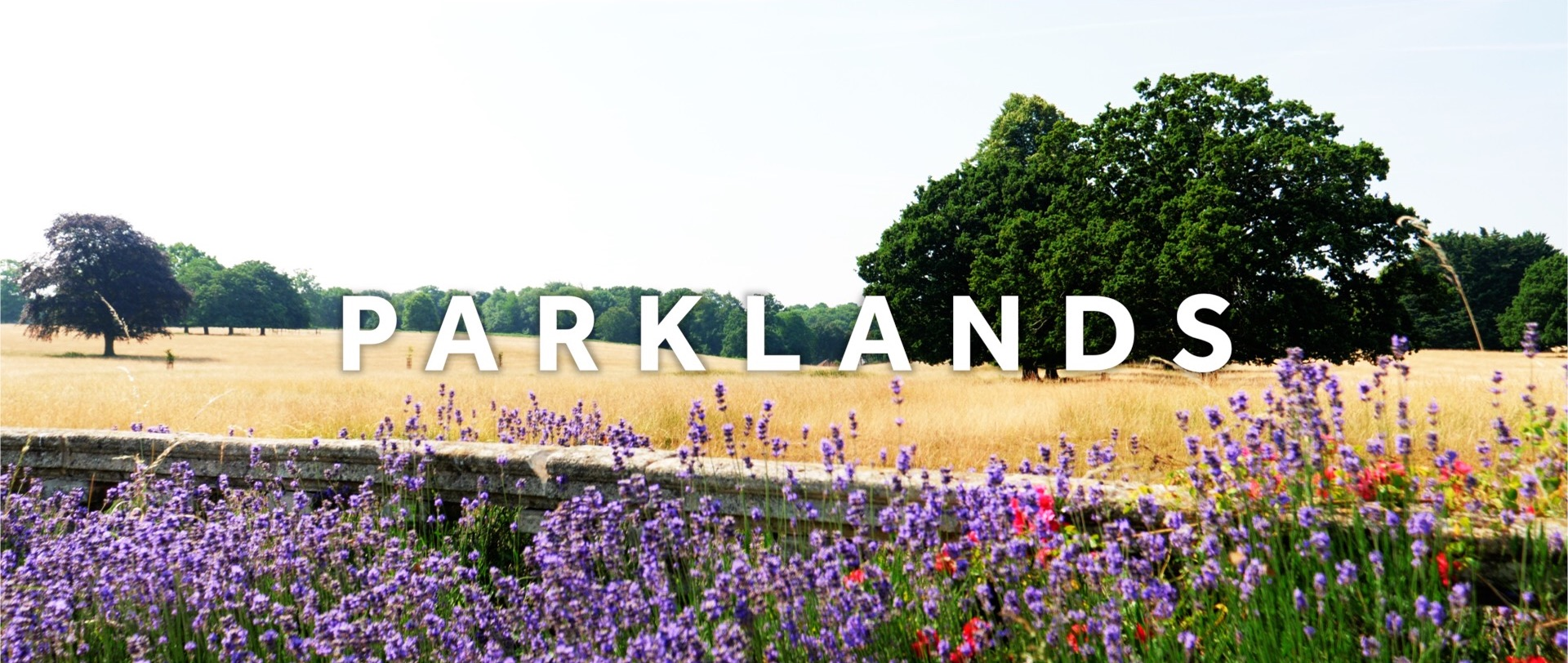 Parklands Summer Wedding Video