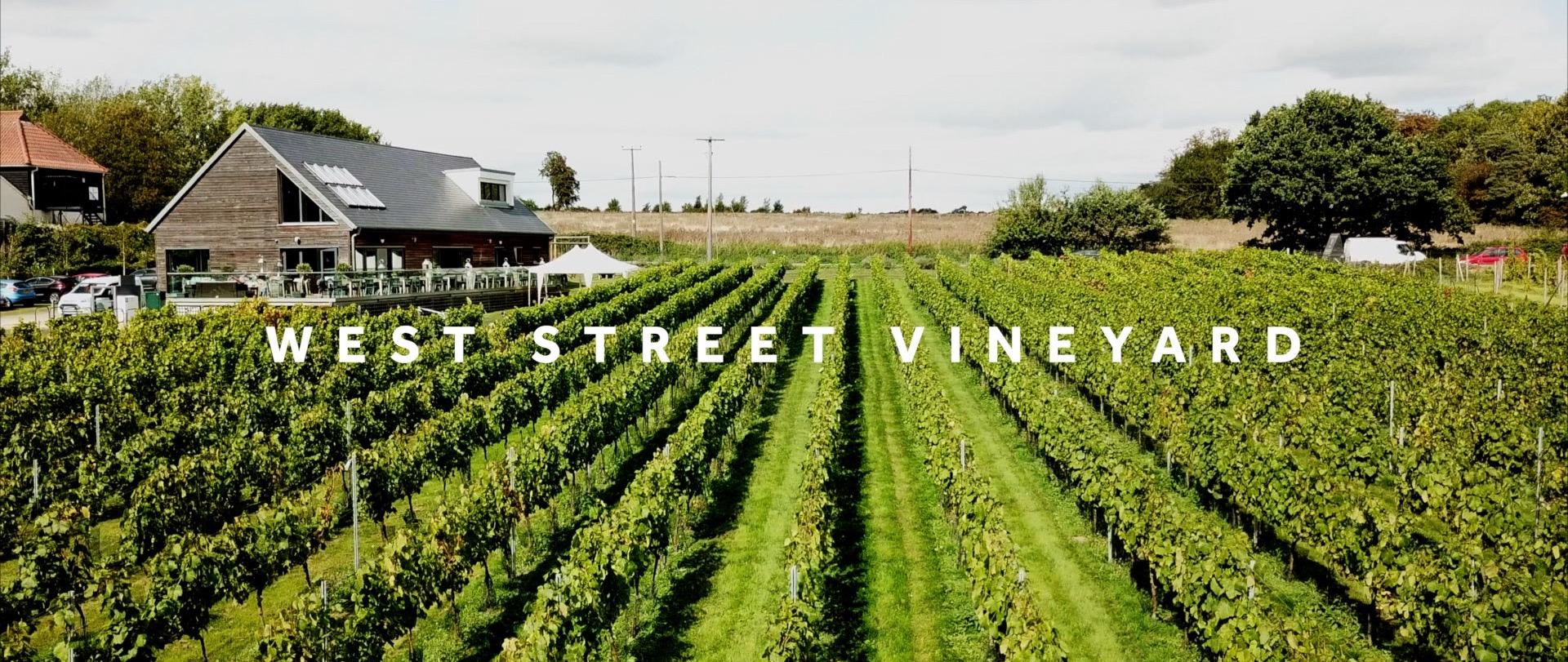 West Street Vineyard 3 Cheers Media.jpg