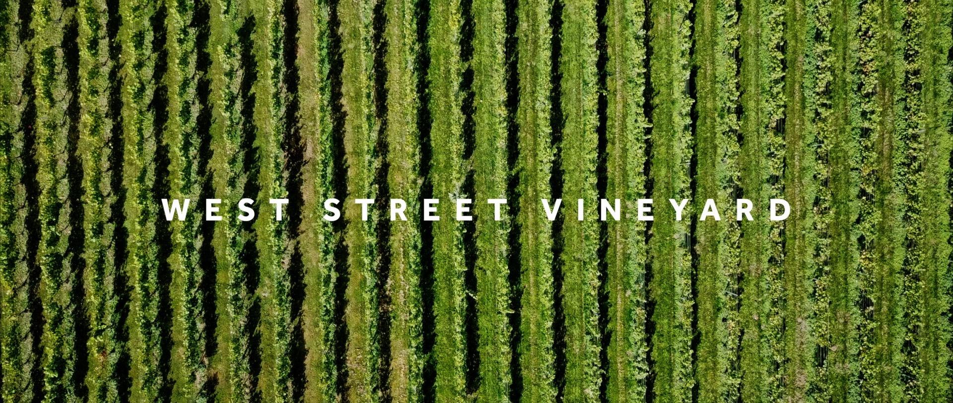 West Street Vineyard Arial View.jpg