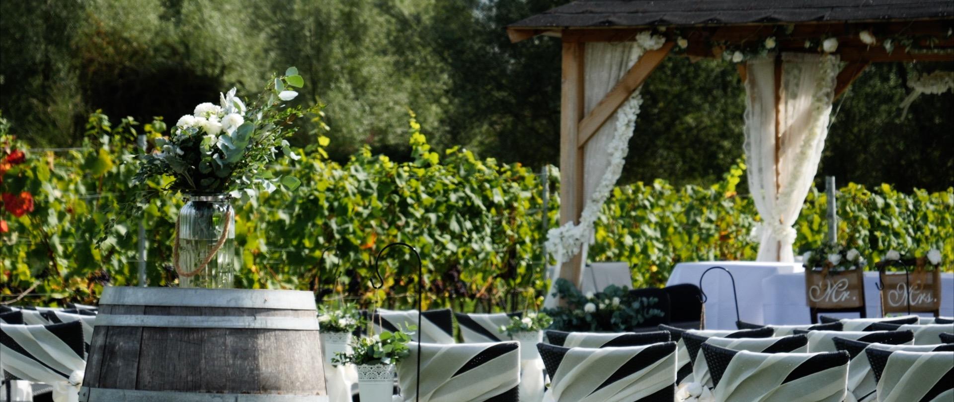 West Street Vineyard Wedding Videos.jpg