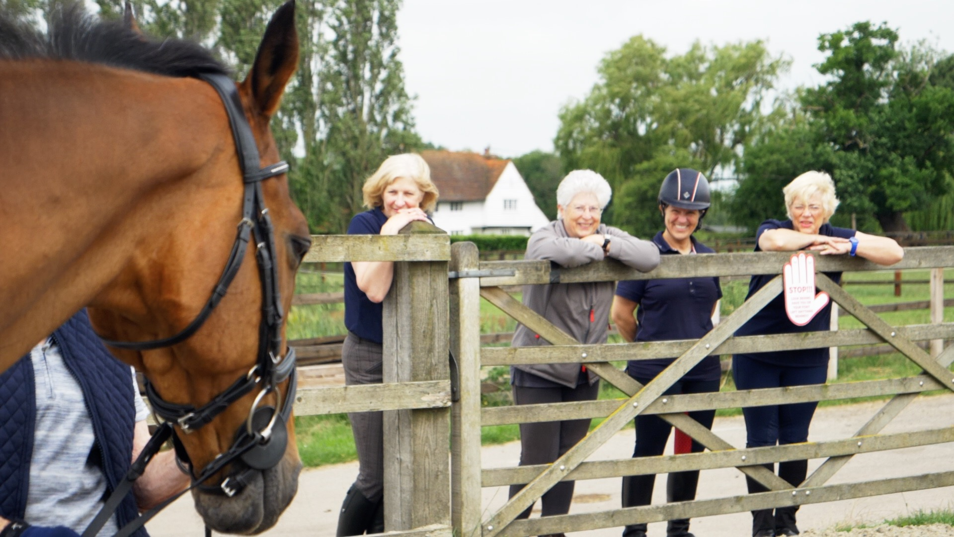 Essex Equestrian Centre Videography.jpg