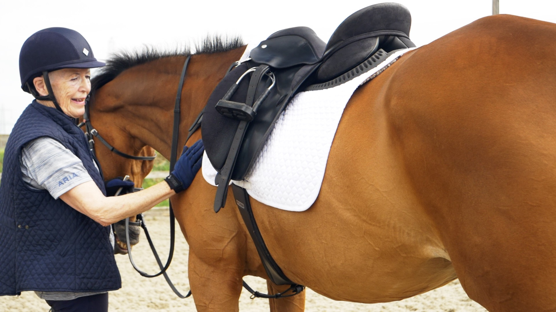 Essex Horse Videography.jpg