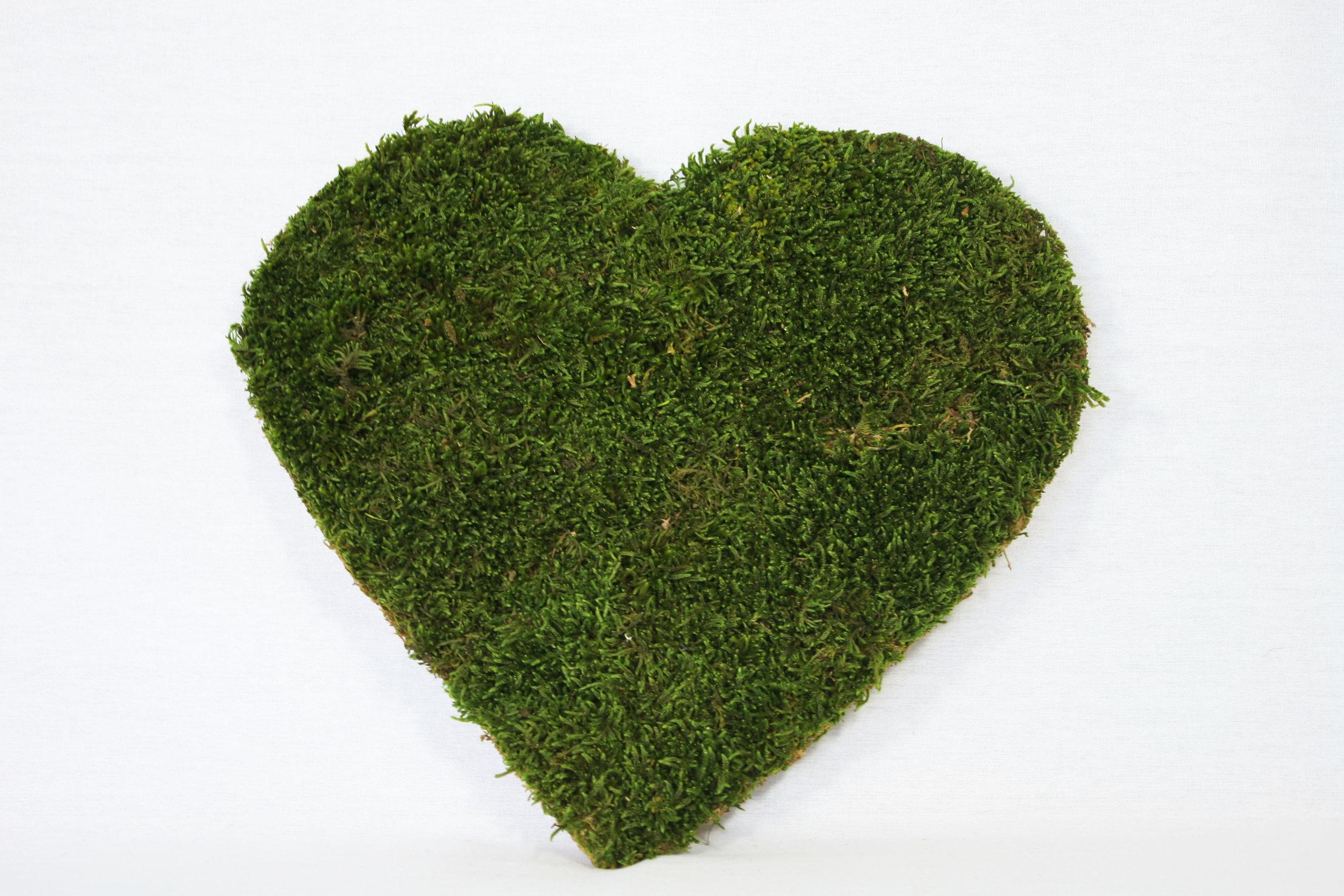 tableau-vegetal-coeur-bois.JPG