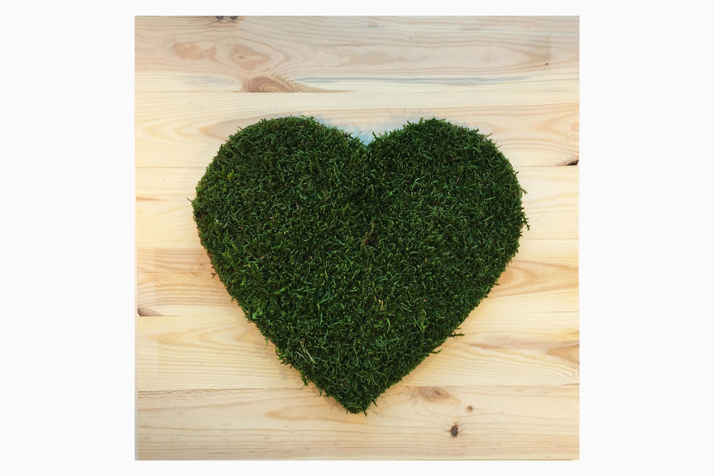 cadre-vegetal-coeur-planche-hoai 2.jpg