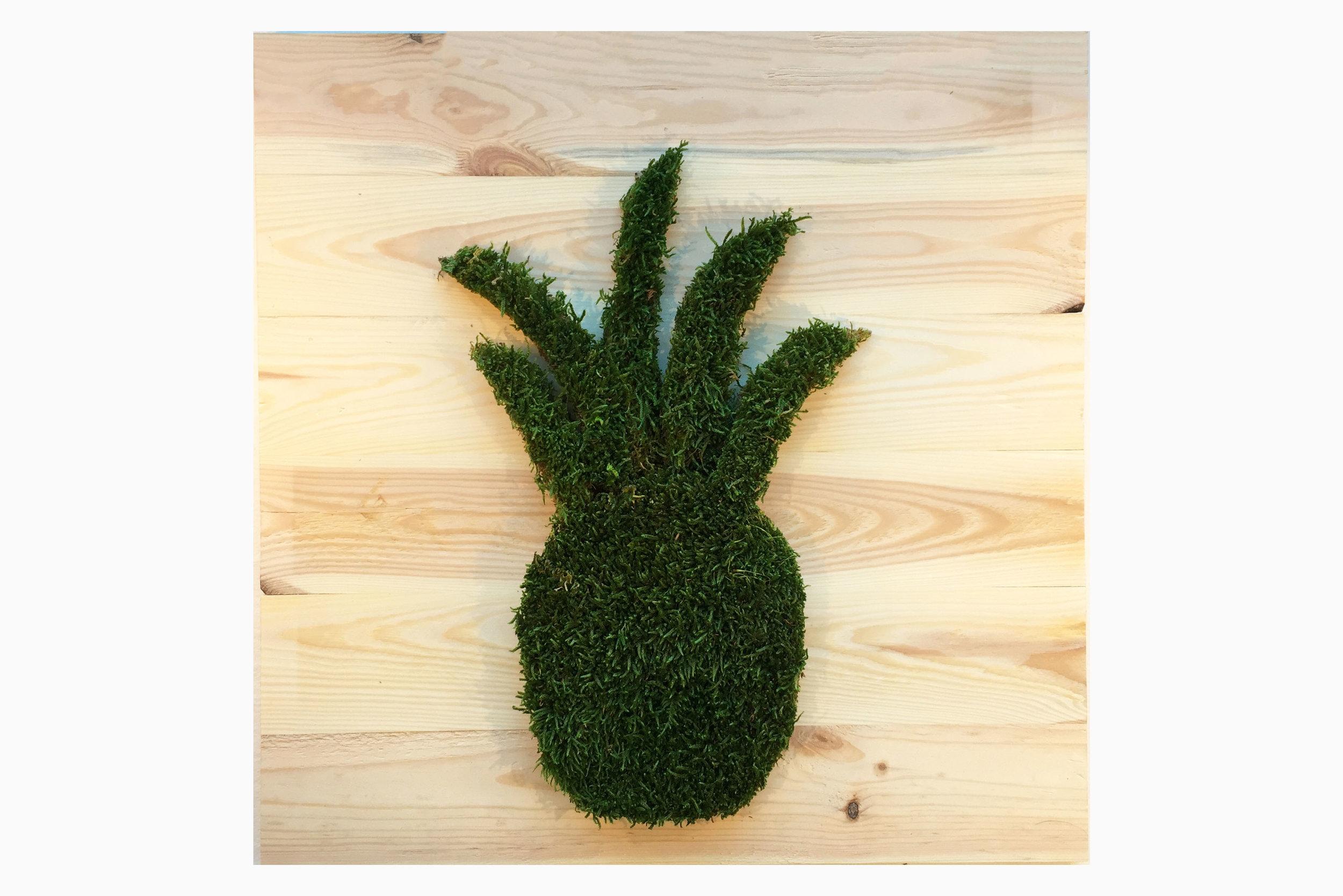 cadre-vegetal-ananas-planche-hoai 2.jpg