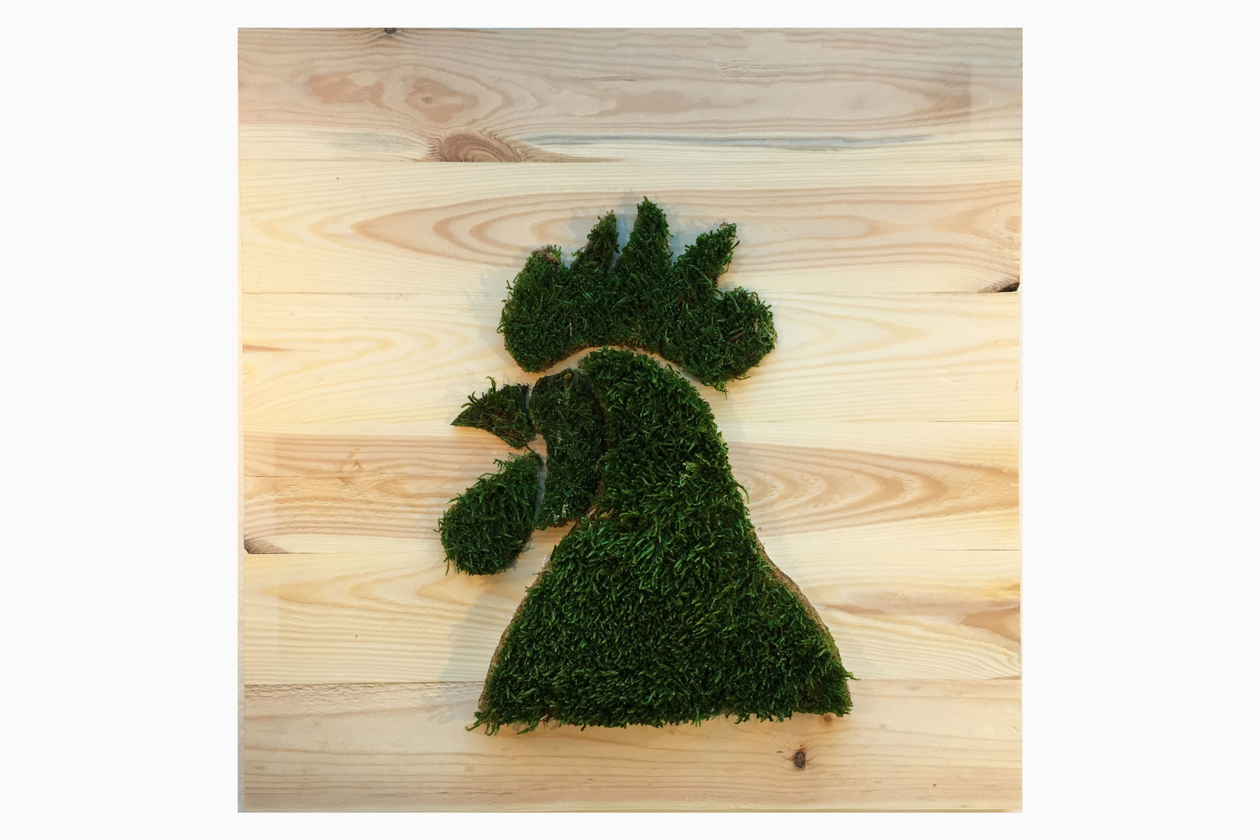 cadre-vegetal-coq-planche-hoai 2.jpg