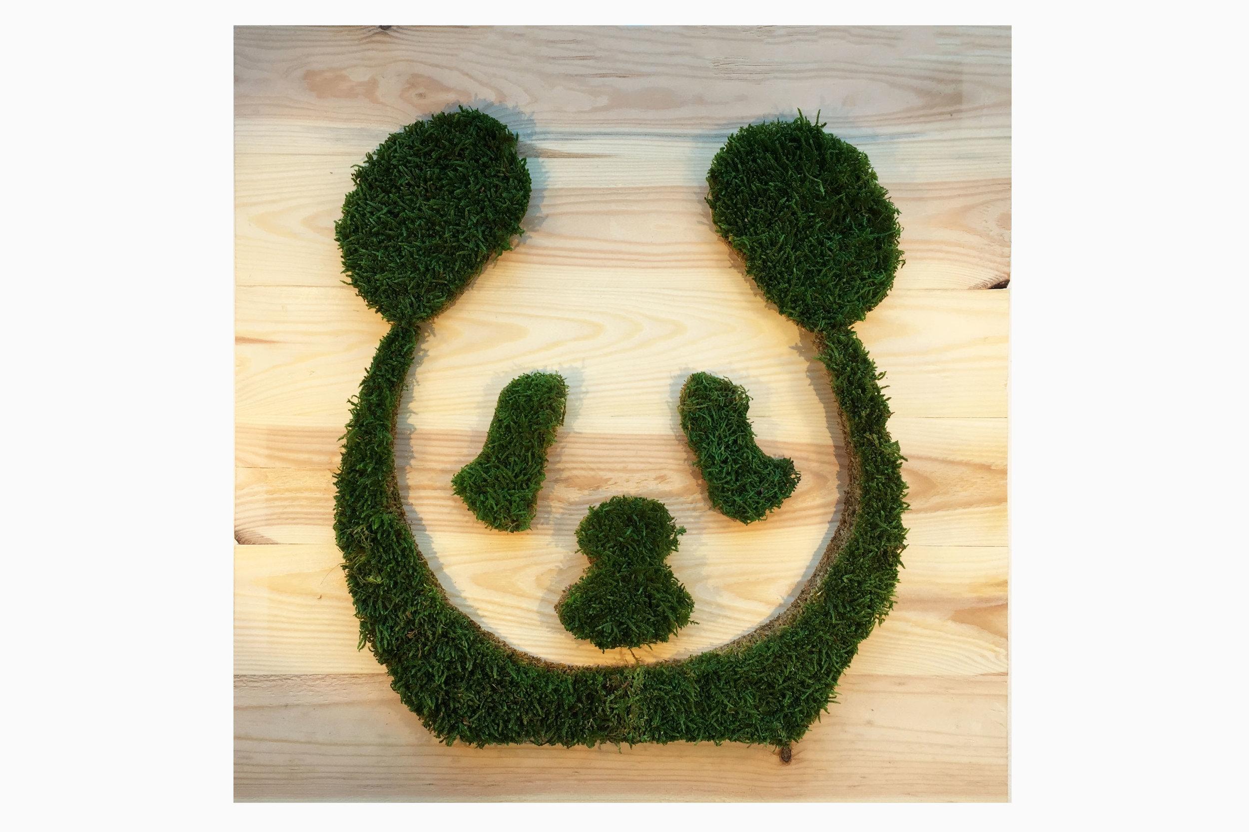 cadre-vegetal-panda-planche-hoai 2.jpg