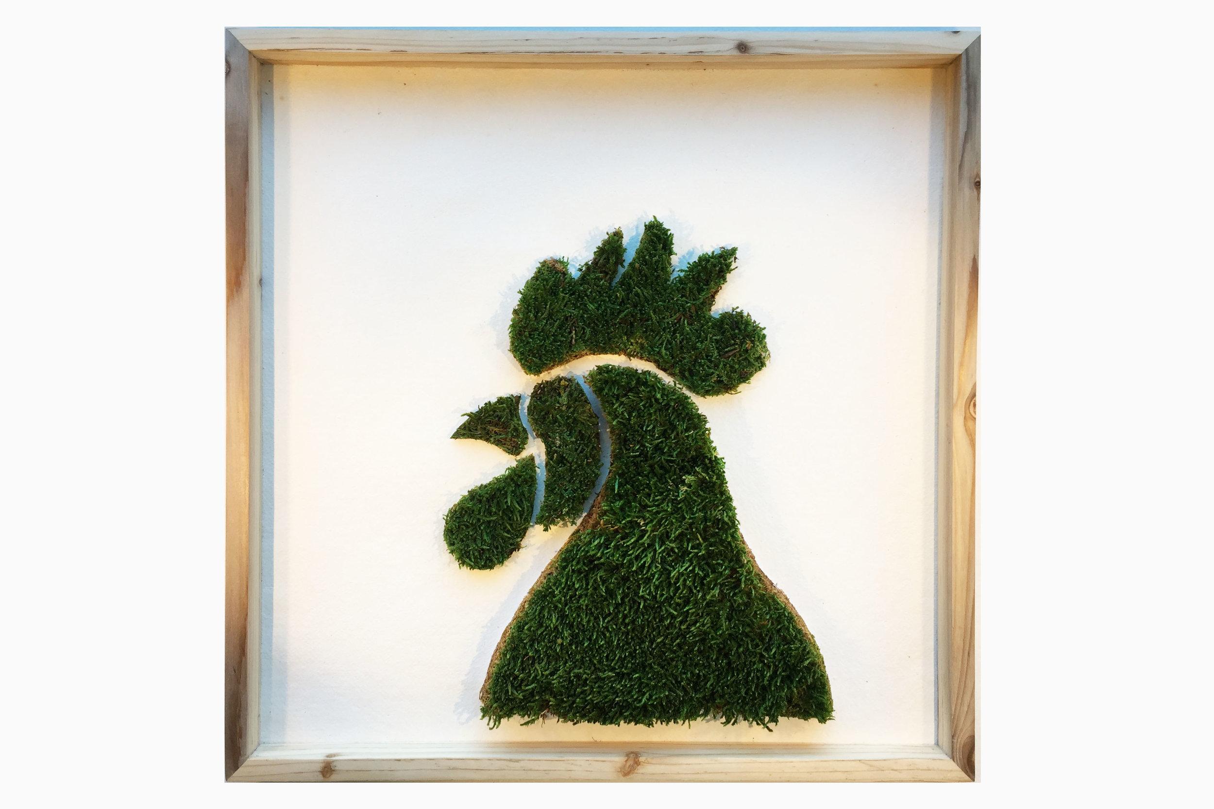 cadre-vegetal-coq-hoai.jpg