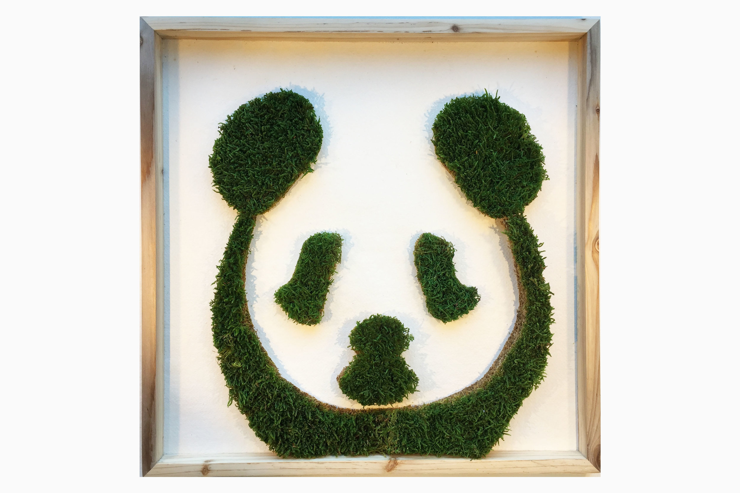 cadre-vegetal-panda-hoai.jpg