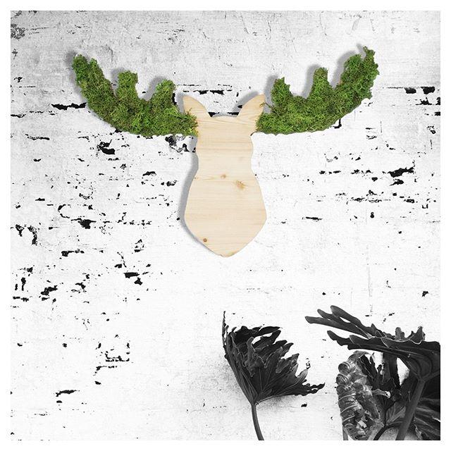 Je vous souhaite un très beau samedi 😊 !⠀ .⠀ 💚Elan💚⠀ .⠀ Création originale fabriquée à la main.⠀ Mousse naturelle stabilisée. Zéro entretien !⠀ En vente sur le site (lien en bio)⠀ Confectionné sur-mesure à vos dimensions 😎⠀ Hoài 🦉- Juliette Durand - juliette@hoai.fr⠀ .⠀ #elan #wildeco #green #vegetalgraphicdesign #vegetalgraphic #designvegetal #moss #plant #chilldeco #passiondeco #decoresponsable #decovegetale #creationoriginale #plantes #zendecoration #ideedecoration #deconature #pieceunique #creationartisanale