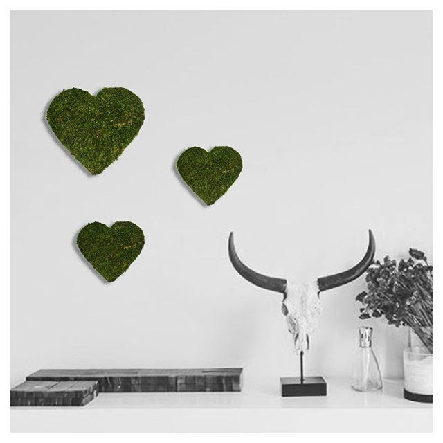 Sunny sundayyyyy ☀️☀️☀️☀️☀️☀️☀️⠀ .⠀ 💚Coeurs💚⠀ .⠀ Création originale fabriquée à la main.⠀ Mousse naturelle stabilisée. Zéro entretien !⠀ Confectionnée sur-mesure à vos dimensions 😎⠀ Hoài 🦉- Juliette Durand - juliette@hoai.fr⠀ .⠀ #coeur #heart #love😍 #zendecoration #decovegetale #decobienetre #decoresponsable #ideedecoration #deconature #botanicalart #pieceunique #creationartisanale #vegetalgraphicdesign #vegetalgraphic #designvegetal #designervegetalinterieur #iloveplants🌿 #moss #vence #nice #cotedazur