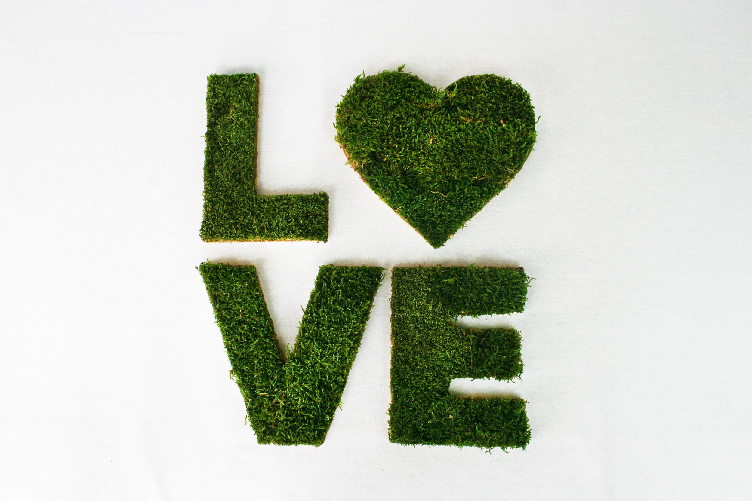 Lettres - Un prénom, un logo, un mot en particulier…Nous créons des lettres de typographie en lichen ou mousse.