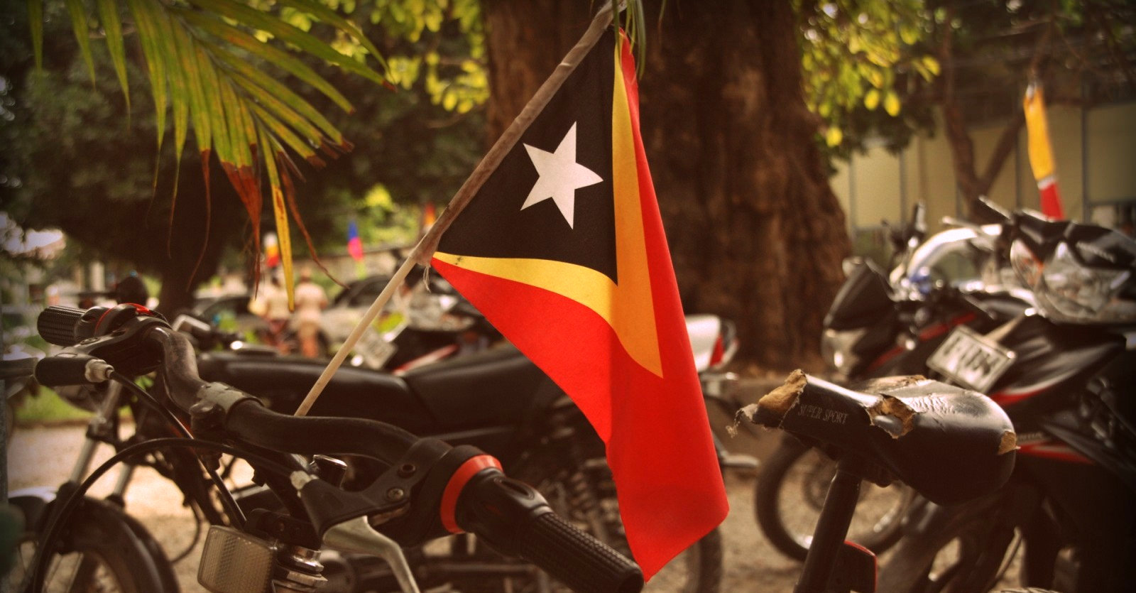 Timor-Leste's forgotten Chinese - The Chinese-Timorese community face discriminationand stereotypes in the country they've long called home.
