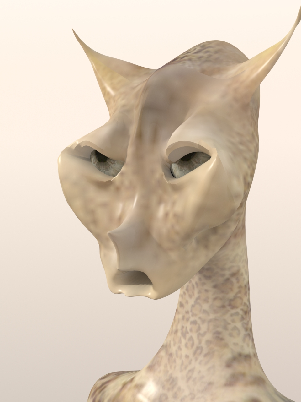 Male Cat 11.JPG