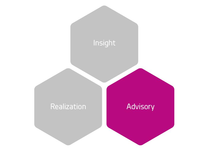 Insight_Advisory_Realization_grund_Advisory_Rityta 1.jpg