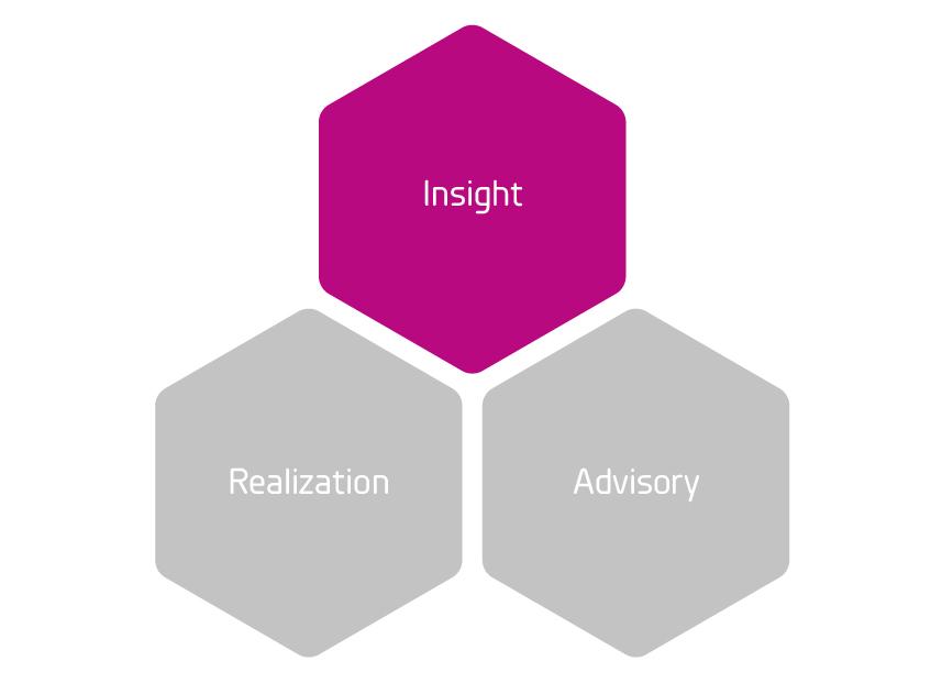 Insight_Advisory_Realization_grund_Insight_Rityta 1.jpg