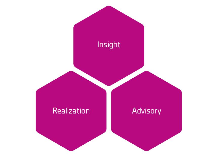 Insight_Advisory_Realization_grund_Rityta 1.jpg