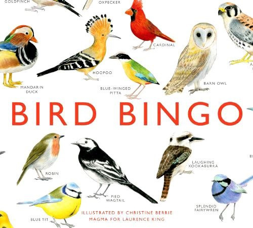 Bird Bingo £19.99.jpg