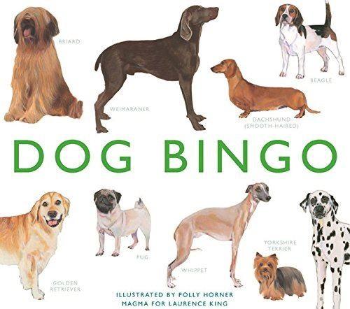 Dog Bingo £19.99.jpg