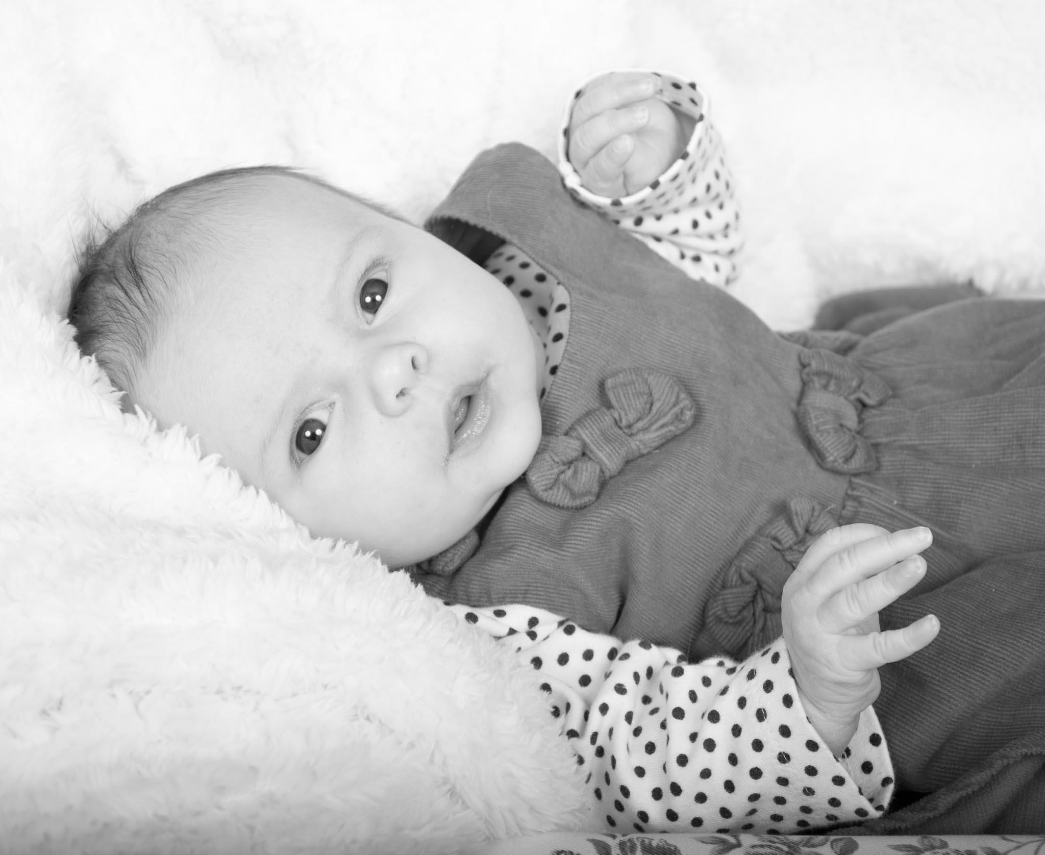 Babies 1-3.jpg