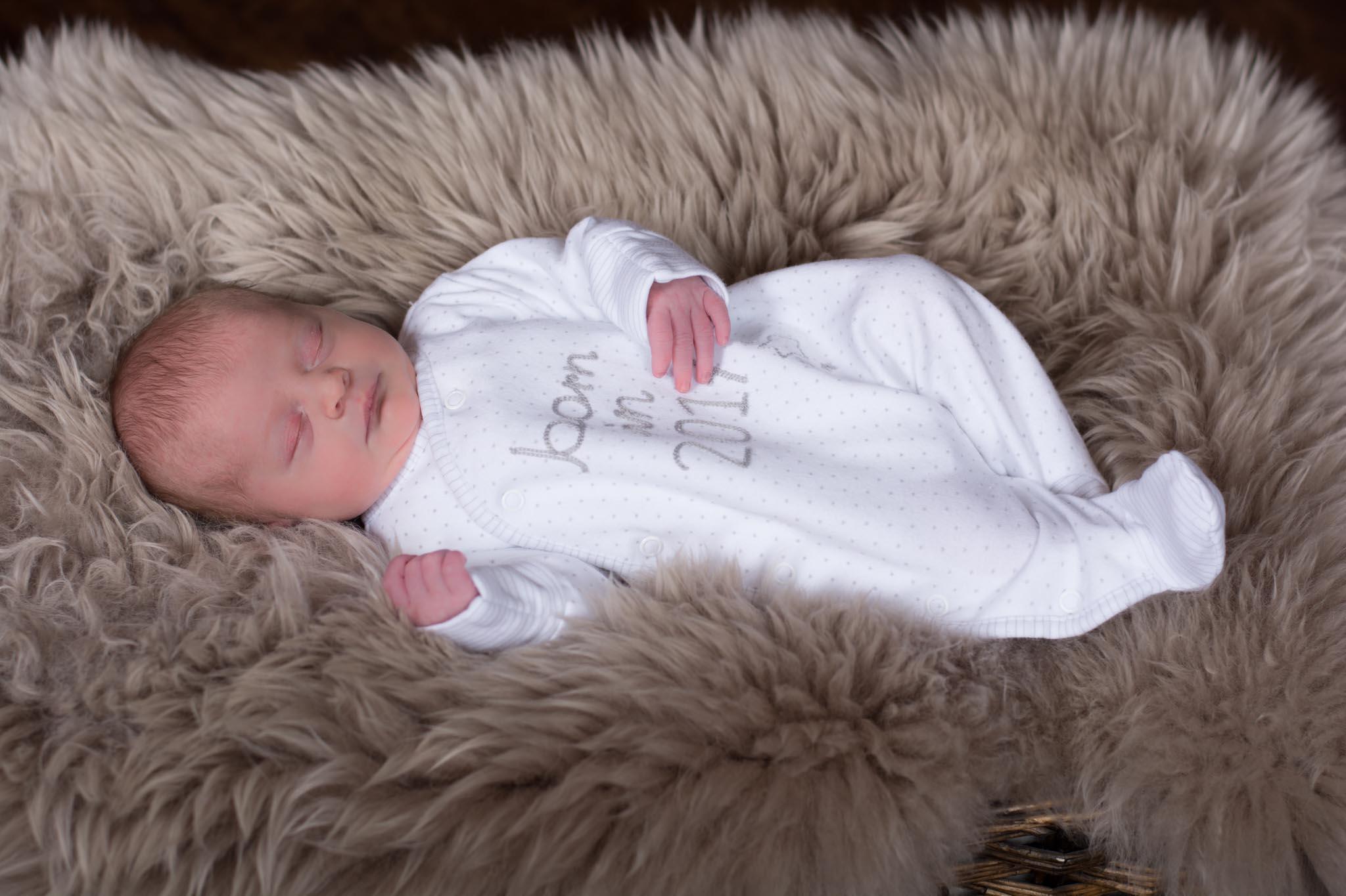 Babies 6.jpg