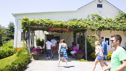 Pugliese Vineyards_tasting room people walking outside.jpg