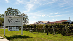 Pindar Vineyards_sign blue sky and vines.jpg