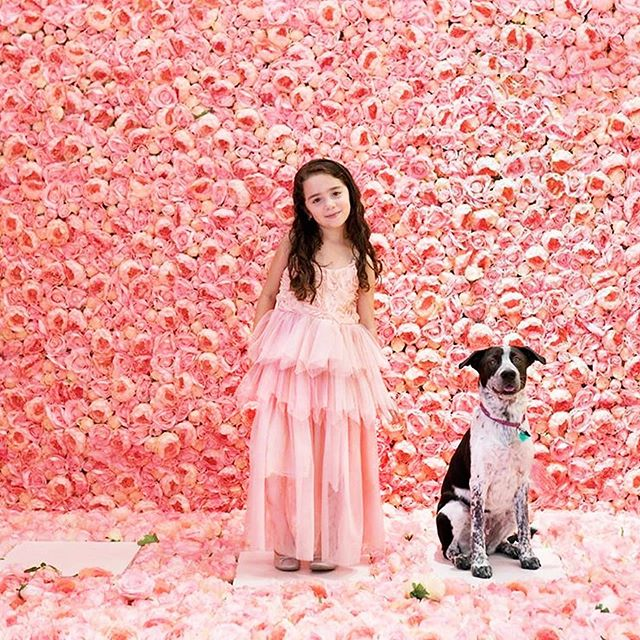 A little girl and her pup...💕 DREAMY. Did you have fun at Bark in the Park? We did, too! 🙋♀️ Stay tuned for an exciting announcement tomorrow.... 🎉🎉🎉  Gracias!! @themamicam @mymk_photography 