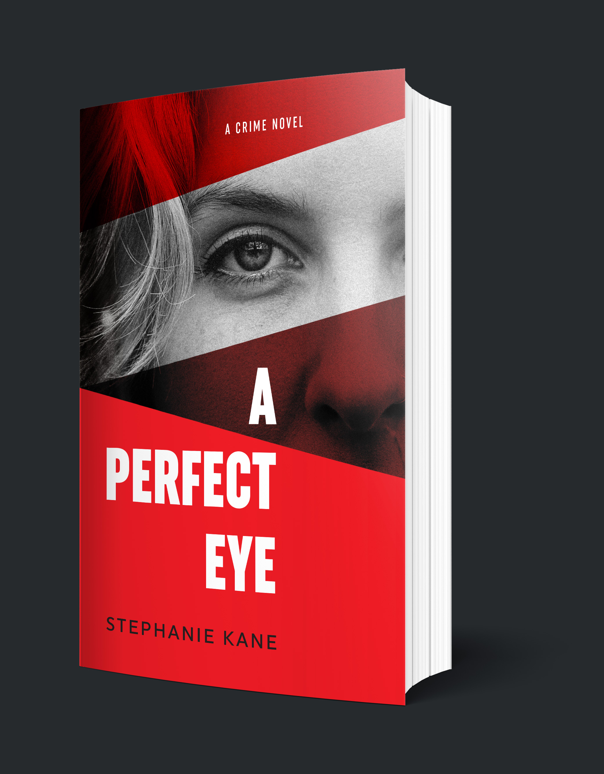 a-perfect-eye_cover_stephanie-kane.jpg
