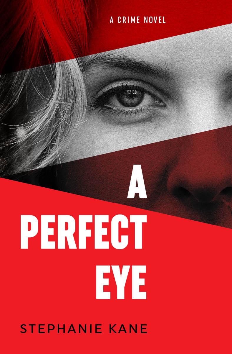 a-perfect-eye_cover_stephanie_kane.jpg