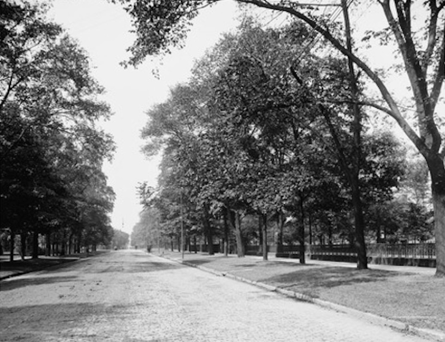 Residents were proud of the beautiful settings and the mansions to the north side (on the right) that were set back hundreds of feet from the avenue.