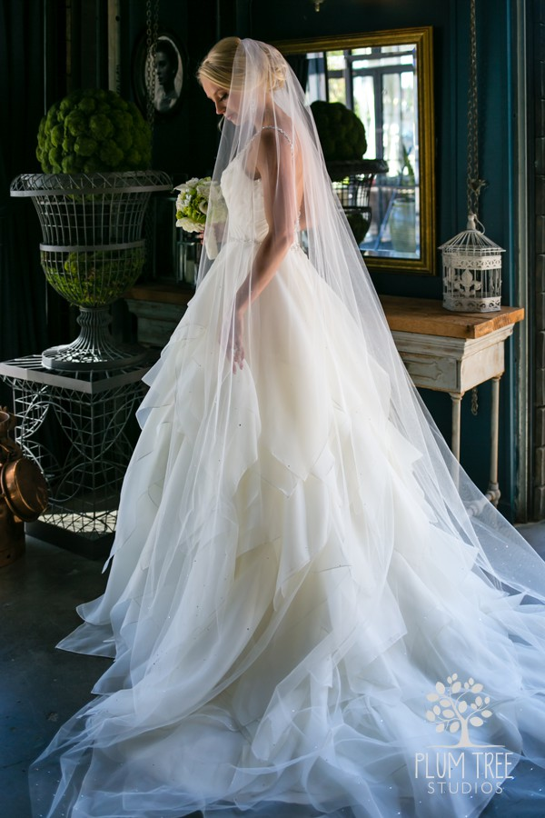 Bridal Portrait at Hughes Manor by Plum Tree Studios.jpg