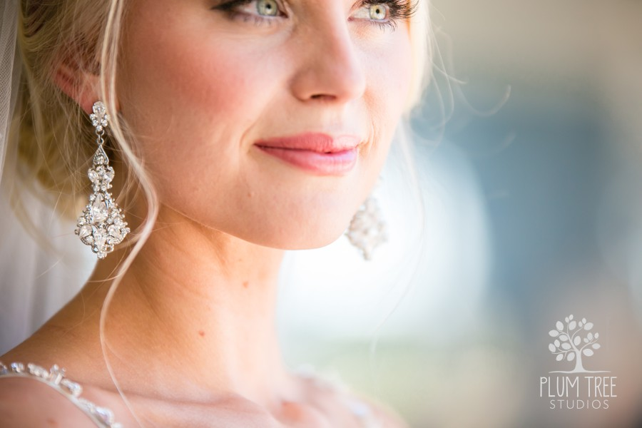 Makeup by KeriAnn Houston Bridal Portrait.jpg