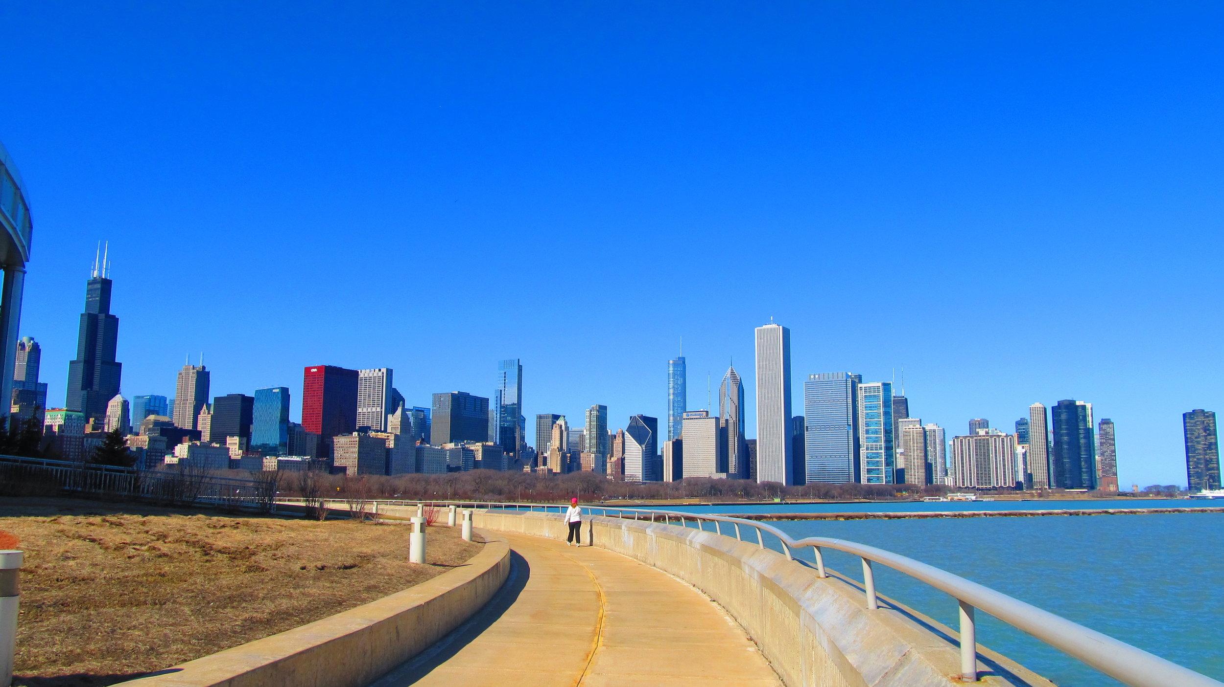 Chicago_Skyline_-_panoramio_(3).jpg