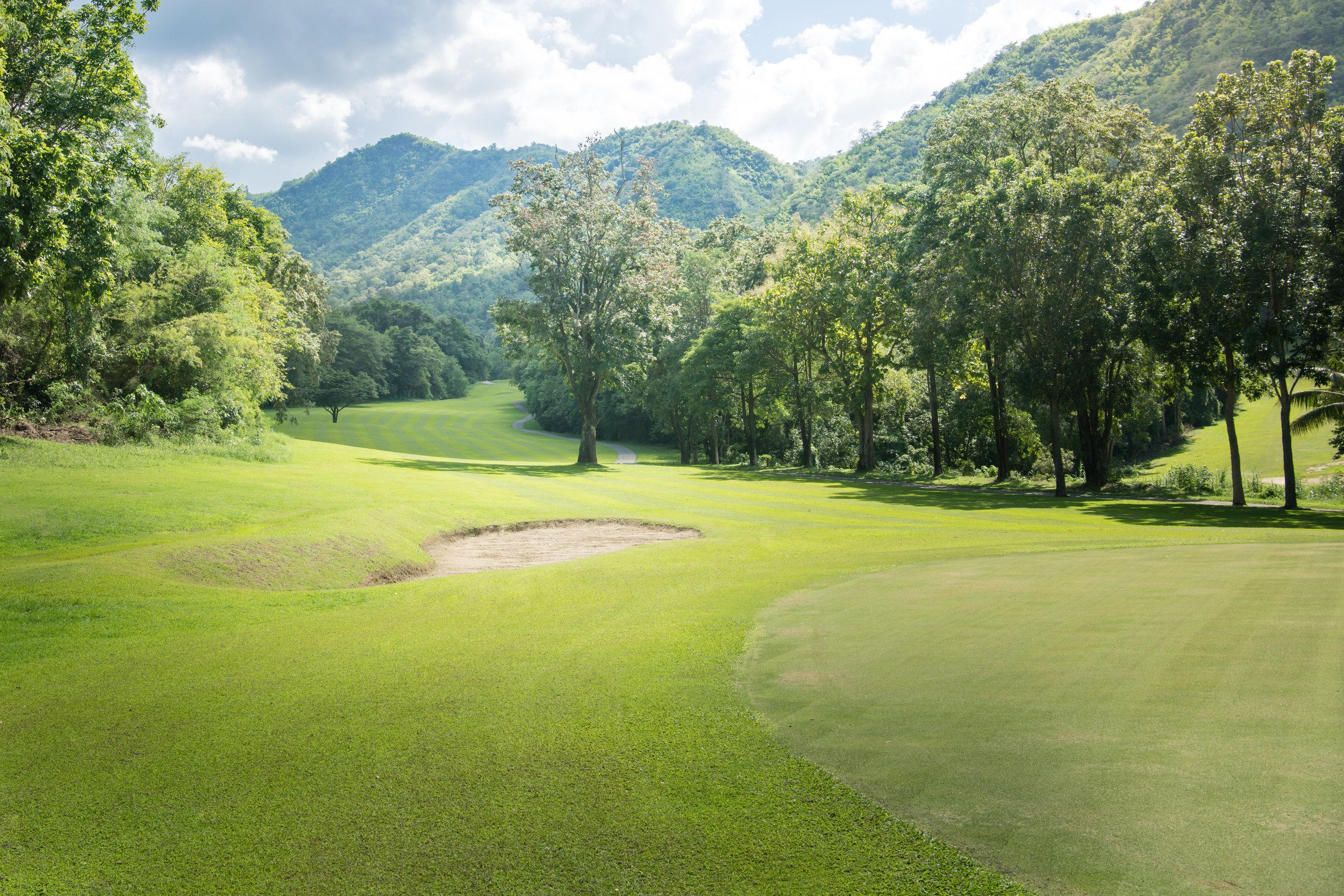 golf-AMHLQB2 copy.jpg