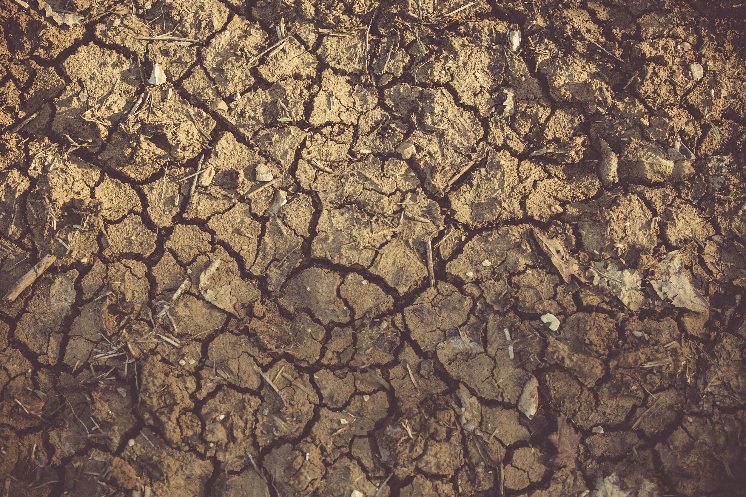 arid-clay-close-up-1097016.jpg